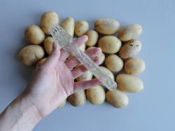 У Швеції винайшли еко-пластик із картопляного крохмалю і води