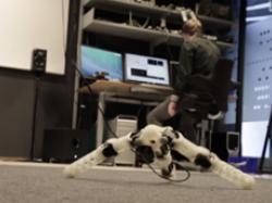 Роботи вчаться адаптуватися в навколишньому середовищі