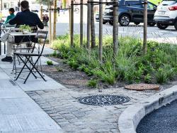Унікальна вулична плитка поливає рослини дощовою водою