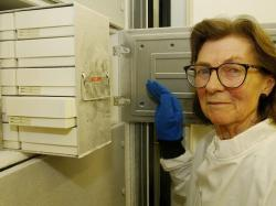 Энн МакЛарен (1927-2007, специалист в области репродуктологии)